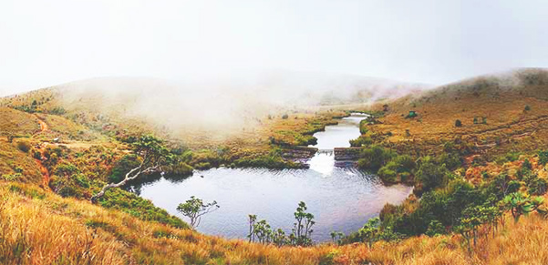 horton-plains