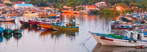 bentota-fish-market