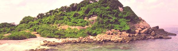 nilaweli